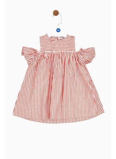 Riccione Kız Bebek Çizgili Elbise 19SS0RR2905 Renkli